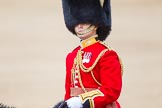 Trooping the Colour 2013: The Aide-de-Camp, Captain John James Hathaway-White, Grenadier Guards, during the Inspection of the Line.. Horse Guards Parade, Westminster, London SW1,  United Kingdom, on 15 June 2013 at 11:02, image #324