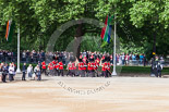 Trooping the Colour 2013: The 'Keepers of the Ground', guardsmen bearing marker flags for their respective regiments, marching on Horse Guards Road along St James's Park. Image #22, 15 June 2013 09:52 Horse Guards Parade, London, UK
