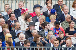 Trooping the Colour 2013 (spectators). Image #1018, 15 June 2013 10:27