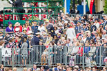 Trooping the Colour 2013 (spectators). Image #1024, 15 June 2013 10:28