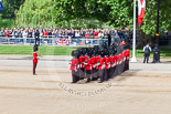 Trooping the Colour 2013: No. 1 Guard (Escort for the Colour),1st Battalion Welsh Guards. Behind them spectators watching from St James's Park. Image #116, 15 June 2013 10:32 Horse Guards Parade, London, UK