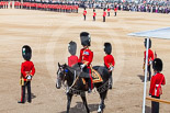 Trooping the Colour 2013: The Major of the Parade, Major H G C Bettinson, Welsh Guards, is riding past the eighteen officers waiting for the command to return to their Guards. Image #141, 15 June 2013 10:37 Horse Guards Parade, London, UK