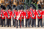 Trooping the Colour 2013: No. 1 Guard (Escort for the Colour),1st Battalion Welsh Guards, with the Ensign that will troop the Colour through the ranks. Image #225, 15 June 2013 10:55 Horse Guards Parade, London, UK
