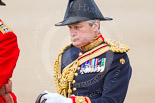 Trooping the Colour 2013: The Crown Equerry Colonel Toby Browne, during the Inspection of the Line. Image #317, 15 June 2013 11:02 Horse Guards Parade, London, UK