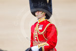 Trooping the Colour 2013: The Aide-de-Camp, Captain John James Hathaway-White, Grenadier Guards, during the Inspection of the Line. Image #324, 15 June 2013 11:02 Horse Guards Parade, London, UK