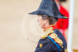Trooping the Colour 2013: Side-rear close-up of HRH The Princess Royal, Colonel The Blues and Royals (Royal Horse Guards and 1st Dragoons) after the Inspection of the Line. Image #388, 15 June 2013 11:08 Horse Guards Parade, London, UK