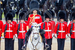 Trooping the Colour 2013: The Field Officer in Brigade Waiting, Lieutenant Colonel Dino Bossi, Welsh Guards, at the end of the Massed Bands Troop - the Clolour will now be handed over to the Ensign. Image #422, 15 June 2013 11:14 Horse Guards Parade, London, UK