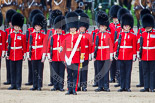 Trooping the Colour 2013: No. 1 Guard (Escort for the Colour),1st Battalion Welsh Guards, with the Ensign, Second Lieutenant Joel Dinwiddle, in the centre. Image #423, 15 June 2013 11:15 Horse Guards Parade, London, UK