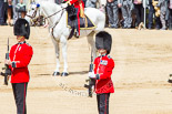 Trooping the Colour 2013: The Regimental Sergeant Major, WO1 Martin Topps, Welsh Guards, one of the two (unnamed) sentries, and the Colour Sergeant, R J Heath, Welsh Guards, presenting arms. Image #466, 15 June 2013 11:21 Horse Guards Parade, London, UK