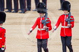 Trooping the Colour 2013: The Colour Party joins the Escort to the Colour, here the two sentries. Image #472, 15 June 2013 11:22 Horse Guards Parade, London, UK