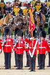 Trooping the Colour 2013: The Ensign, Second Lieutenant Joel Dinwiddle, and the Escort to the Colour,are back at their initial position, when they were the Escort for the Colour. Image #506, 15 June 2013 11:28 Horse Guards Parade, London, UK
