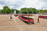Trooping the Colour 2013: The Major of the Parade, Major H G C Bettinson, Welsh Guards, is following the guards during the March Past. Image #556, 15 June 2013 11:38 Horse Guards Parade, London, UK