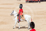 Trooping the Colour 2013: The Field Officer in Brigade Waiting, Lieutenant Colonel Dino Bossi, Welsh Guards, returning to the head of the guards during the March Past. Image #567, 15 June 2013 11:39 Horse Guards Parade, London, UK