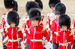 Trooping the Colour 2013: Musicians of the band of the Grenadier Guards and of the Corps of Drums. Image #640, 15 June 2013 11:51 Horse Guards Parade, London, UK