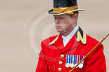 Trooping the Colour 2013: Close-up of Head Coachman Mark Hargreaves during the March Off. Image #810, 15 June 2013 12:10 Horse Guards Parade, London, UK