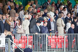 Trooping the Colour 2013 (spectators). Image #1072, 15 June 2013 12:14