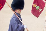 The Colonel's Review 2014. Horse Guards Parade, Westminster, London,  United Kingdom, on 07 June 2014 at 09:31, image #7