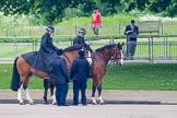 The Colonel's Review 2014. Horse Guards Parade, Westminster, London,  United Kingdom, on 07 June 2014 at 09:32, image #8