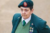 The Colonel's Review 2014. Horse Guards Parade, Westminster, London,  United Kingdom, on 07 June 2014 at 09:40, image #13