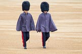 The Colonel's Review 2014. Horse Guards Parade, Westminster, London,  United Kingdom, on 07 June 2014 at 09:50, image #21
