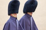 The Colonel's Review 2014. Horse Guards Parade, Westminster, London,  United Kingdom, on 07 June 2014 at 09:50, image #24