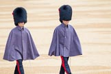 The Colonel's Review 2014. Horse Guards Parade, Westminster, London,  United Kingdom, on 07 June 2014 at 09:51, image #25