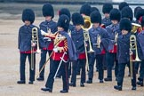 The Colonel's Review 2014. Horse Guards Parade, Westminster, London,  United Kingdom, on 07 June 2014 at 10:17, image #87