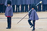 The Colonel's Review 2014. Horse Guards Parade, Westminster, London,  United Kingdom, on 07 June 2014 at 10:20, image #99