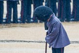 The Colonel's Review 2014. Horse Guards Parade, Westminster, London,  United Kingdom, on 07 June 2014 at 10:20, image #100