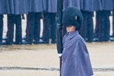 The Colonel's Review 2014. Horse Guards Parade, Westminster, London,  United Kingdom, on 07 June 2014 at 10:20, image #101