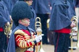 The Colonel's Review 2014. Horse Guards Parade, Westminster, London,  United Kingdom, on 07 June 2014 at 10:22, image #105