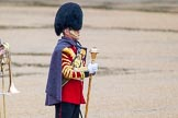 The Colonel's Review 2014. Horse Guards Parade, Westminster, London,  United Kingdom, on 07 June 2014 at 10:23, image #108
