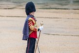 The Colonel's Review 2014. Horse Guards Parade, Westminster, London,  United Kingdom, on 07 June 2014 at 10:23, image #109