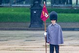 The Colonel's Review 2014. Horse Guards Parade, Westminster, London,  United Kingdom, on 07 June 2014 at 10:23, image #110