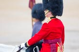 The Colonel's Review 2014. Horse Guards Parade, Westminster, London,  United Kingdom, on 07 June 2014 at 10:25, image #111