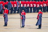 The Colonel's Review 2014. Horse Guards Parade, Westminster, London,  United Kingdom, on 07 June 2014 at 10:25, image #113