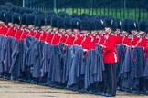 The Colonel's Review 2014. Horse Guards Parade, Westminster, London,  United Kingdom, on 07 June 2014 at 10:26, image #116