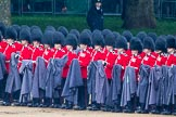 The Colonel's Review 2014. Horse Guards Parade, Westminster, London,  United Kingdom, on 07 June 2014 at 10:26, image #117