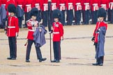 The Colonel's Review 2014. Horse Guards Parade, Westminster, London,  United Kingdom, on 07 June 2014 at 10:26, image #119