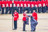 The Colonel's Review 2014. Horse Guards Parade, Westminster, London,  United Kingdom, on 07 June 2014 at 10:26, image #120