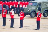 The Colonel's Review 2014. Horse Guards Parade, Westminster, London,  United Kingdom, on 07 June 2014 at 10:27, image #123