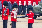 The Colonel's Review 2014. Horse Guards Parade, Westminster, London,  United Kingdom, on 07 June 2014 at 10:28, image #124