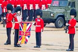 The Colonel's Review 2014. Horse Guards Parade, Westminster, London,  United Kingdom, on 07 June 2014 at 10:28, image #129