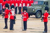 The Colonel's Review 2014. Horse Guards Parade, Westminster, London,  United Kingdom, on 07 June 2014 at 10:29, image #133