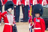 The Colonel's Review 2014. Horse Guards Parade, Westminster, London,  United Kingdom, on 07 June 2014 at 10:29, image #134