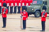 The Colonel's Review 2014. Horse Guards Parade, Westminster, London,  United Kingdom, on 07 June 2014 at 10:29, image #135