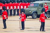 The Colonel's Review 2014. Horse Guards Parade, Westminster, London,  United Kingdom, on 07 June 2014 at 10:29, image #137
