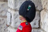 The Colonel's Review 2014. Horse Guards Parade, Westminster, London,  United Kingdom, on 07 June 2014 at 10:30, image #138