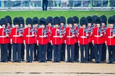 The Colonel's Review 2014. Horse Guards Parade, Westminster, London,  United Kingdom, on 07 June 2014 at 10:32, image #141