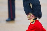The Colonel's Review 2014. Horse Guards Parade, Westminster, London,  United Kingdom, on 07 June 2014 at 10:33, image #142